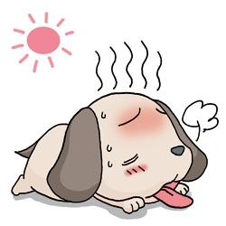 熱中症 犬