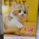 ネコちゃんカレンダー