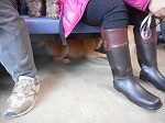 椅子の下で何してるのー?