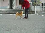 戻ってきます!(^^)!